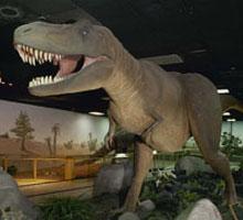 Las Vegas Natural History Museum   Las Vegas